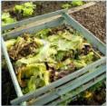 pixwords Kompost